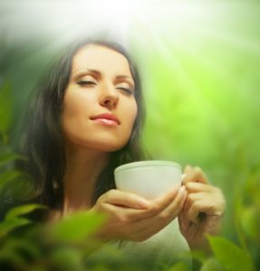Травяной сбор Монастырский чай - купить по низкой цене в фито-аптеке Русские Корни