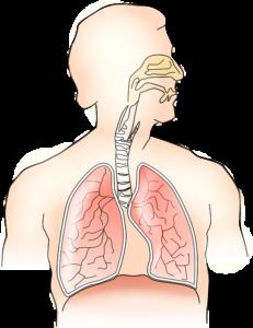 Идиопатическая легочная артериальная гипертензия