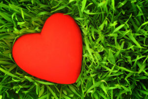 Нарушение ритма сердца по типу фибрилляции предсердий